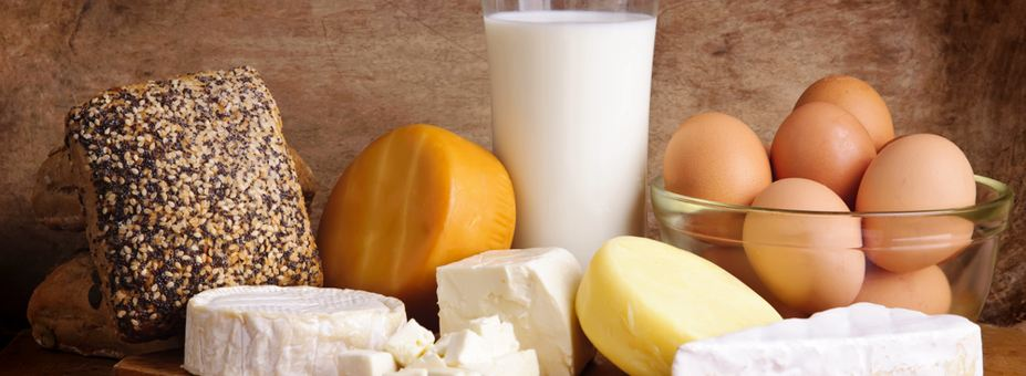 Best Dairy products Made in Egypt