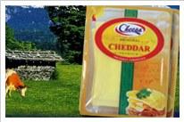 Cheesa Cheddar cheese slices by Riyada