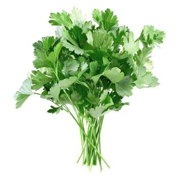 Fresh Parsley by Egyptian Export Center - HB