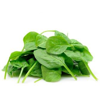 Fresh Spinach by Egyptian Export Center - HB