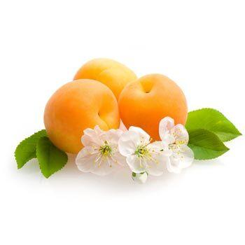 Apricot fresh fruit origin Egypt