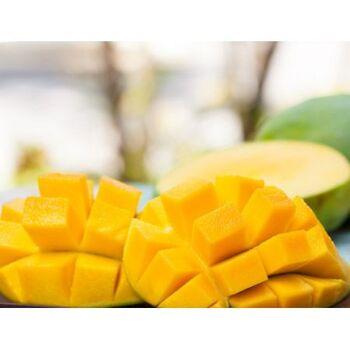 Mango Puree - Drums