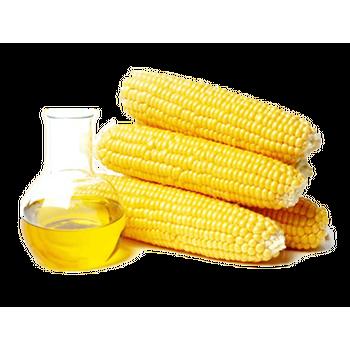 Royal Corn Oil by Oil Tec