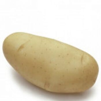 Fresh Spunta Potatoes by AGROFOOD
