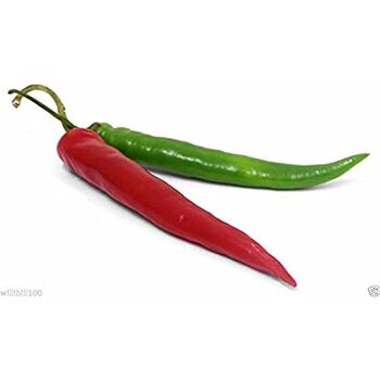 Fresh Green Cili Pepper &  Red Chili Pepper by Green Tiba