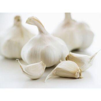 Fresh Garlic by Queen Fresh Produce