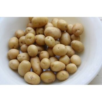 Fresh Baby potatoes by Daltex