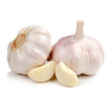 Fresh Garlic by Gouda