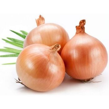 Fresh Golden onions by Green Tiba