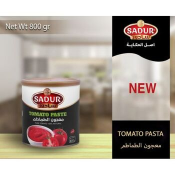 Tomato Paste by Sadur Food Products co.