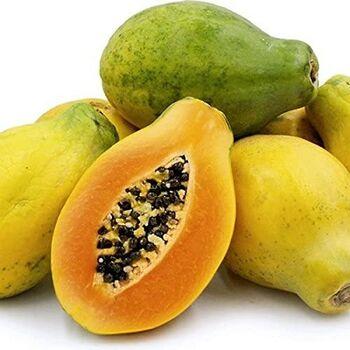 Papaya by EVAGRO
