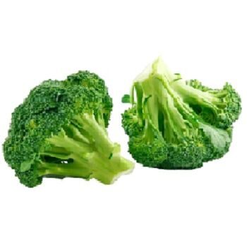 Fresh Broccoli by Egypt Garden