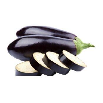 Fresh Eggplant by Egypt Garden