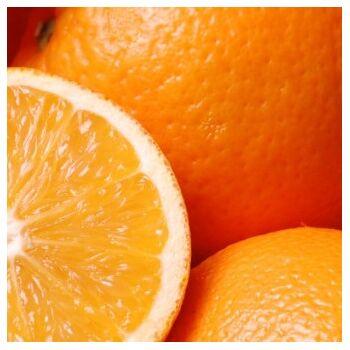 Fresh Navel Orange by Egypt Garden
