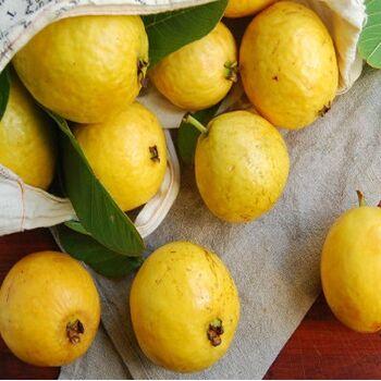 Fresh Guava by Egypt Garden