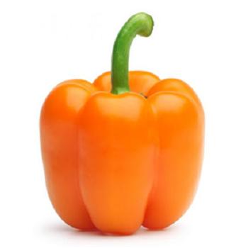Fresh Orange Peppers by Egypt Garden