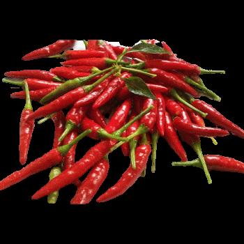 Pickled Dragon Cayenne Pepper by Gouda