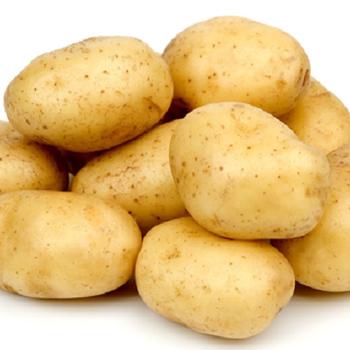 Fresh Potatoes by Egypt Garden