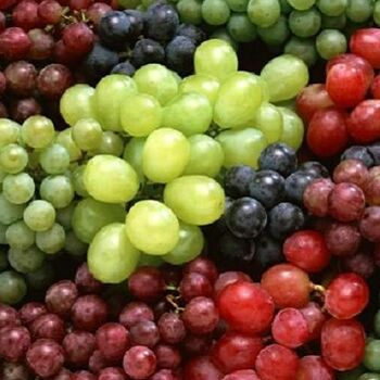 Fresh Grapes by Queen Fresh Produce
