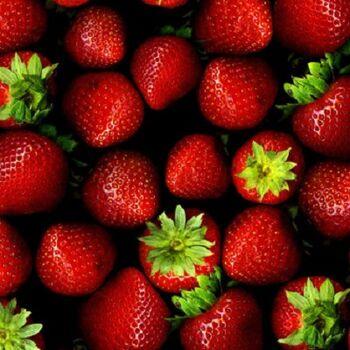 Fresh Strawberryby Egypt Garden