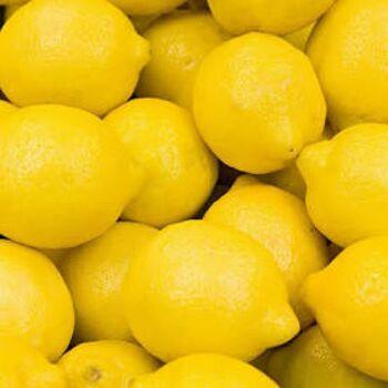 Fresh Lemon by Egypt Garden
