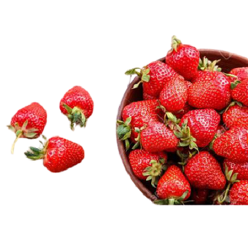 Fresh Strawberry by ICAPP