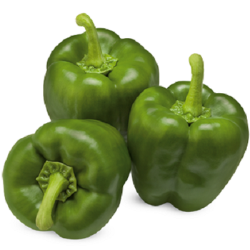 Fresh Green Peppers by Egypt Garden