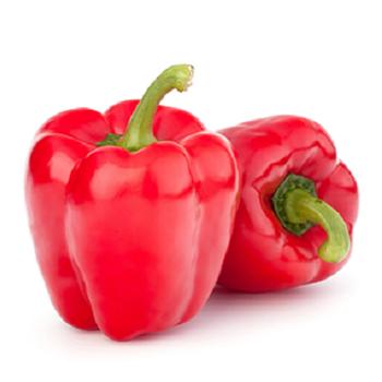 Fresh Paprika by Egypt Garden