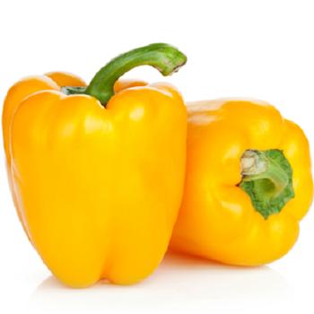 Fresh Yellow Pepper by Egypt Garden