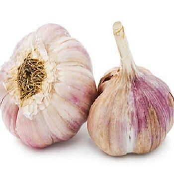 Dried garlic by Egypt Garden