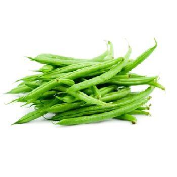 Fresh Green Bean by Egypt Garden