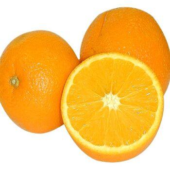 Fresh Navel Orange by Snow Fresh Egypt
