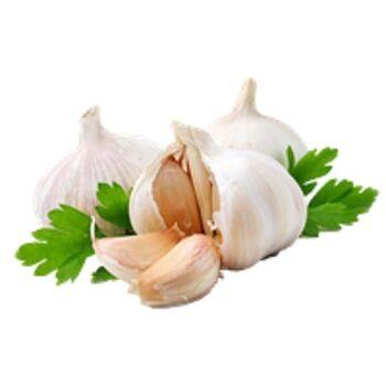 Fresh Garlic by Snow Fresh Egypt