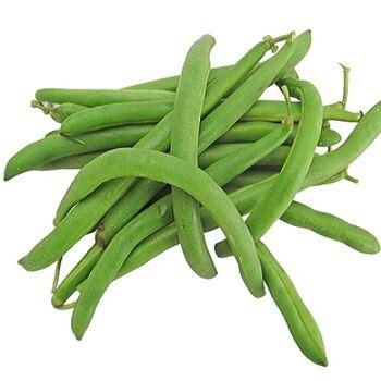 Fresh Green Beans by Snow Fresh Egypt