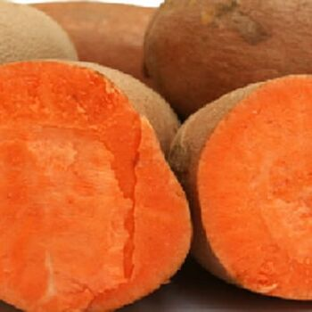 Fresh Sweet Potatoes by Egypt Garden