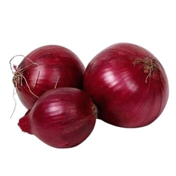 Fresh Red Onions by Queen Fresh Produce