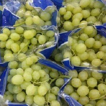 Fresh Grapes by Fruit Kingdom