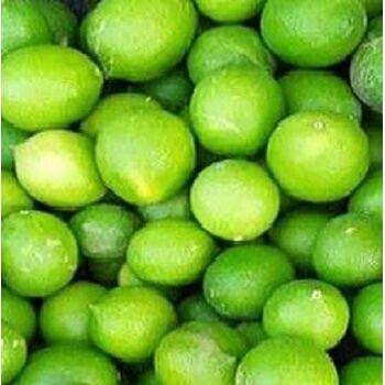 Fresh Lime by Fruit Kingdom