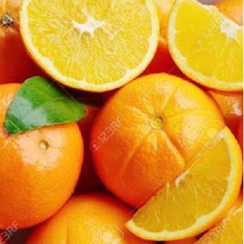 Fresh Baladi Orange by Fruit Kingdom