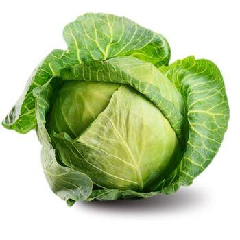 Fresh Lettuce by Nour For Food