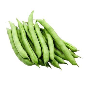 FreshGreen beans by Zamel