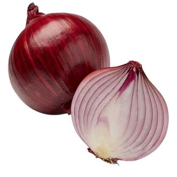 Fresh Red Onions by Zamel
